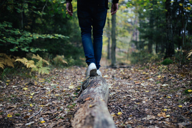 Unser immaterielles Erbe – was zählt im Leben unserer Kinder wirklich?