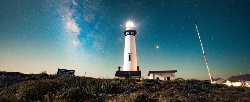 Der Buchtipp für den Sommer: Von der Kunst, sich selbst zu führen